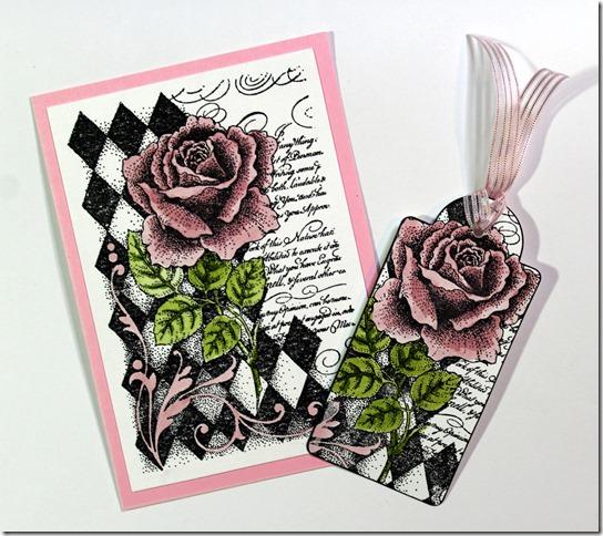 AW Harlequin Rose CAS 2